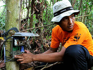 © WWF-Indonesia/Tiger Survey Team